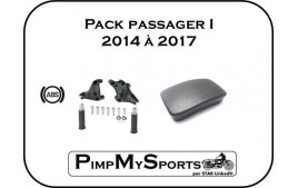 Pack passager Sportster Harley Davidson 2014/2017
