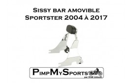 Sissy bar amovible court