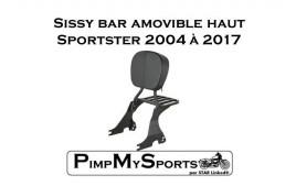 Sissy bar amovible noir