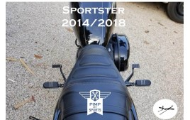 Commandes avancées SPORTSTER 2014 à 2019 Noires vue d ensemble