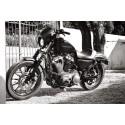Saute vent noir brillant Harley Davidson DYNA Sportster 2004 à 2017