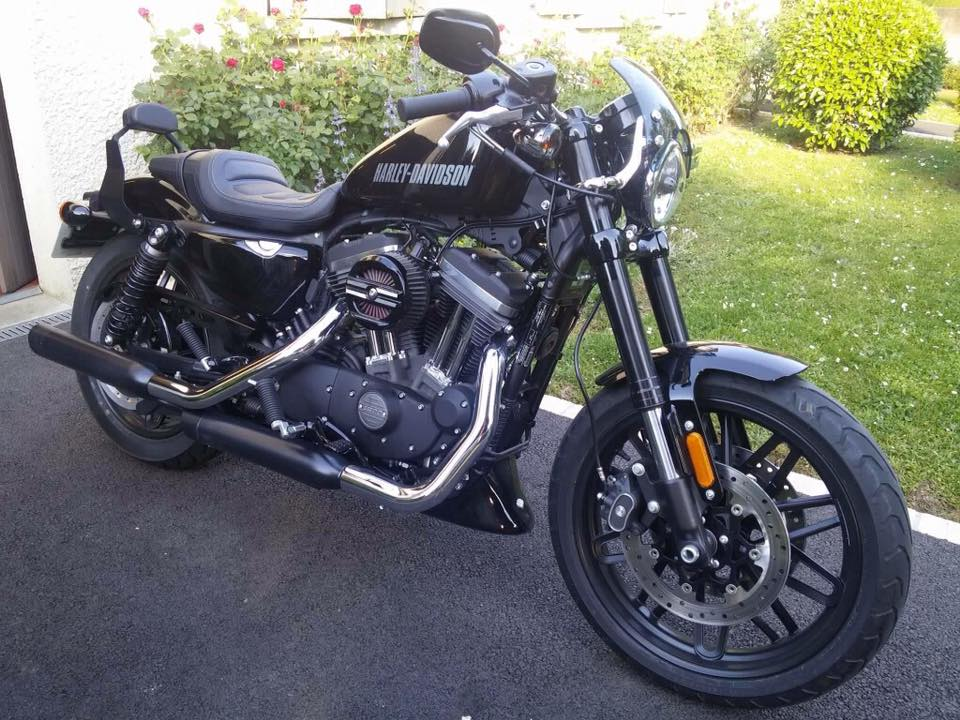 sissy bar Sportster Roadster