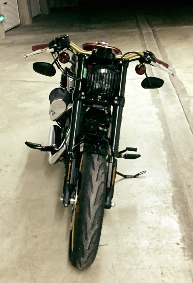 Grille de phare harley 1200CX Sportster