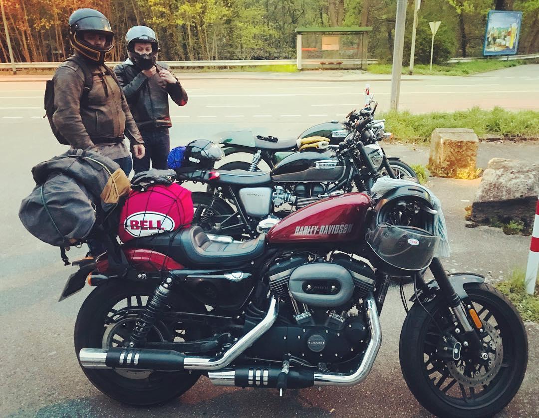 Porte bagage Sissy bar Harley Roadster