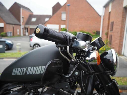 Poignées Harley Roadster