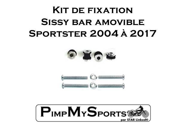 Installation Sissy bar Sportster