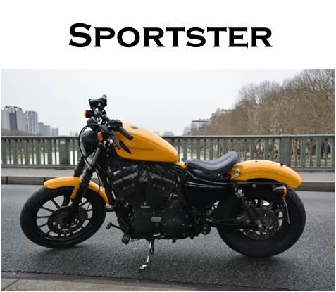 Sportster.jpg